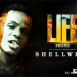 Shellwizz- life (freestyle)